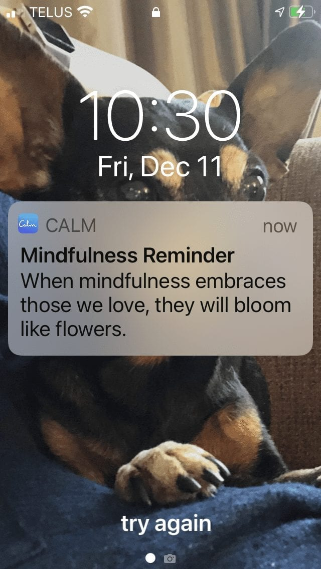 Calm app notification